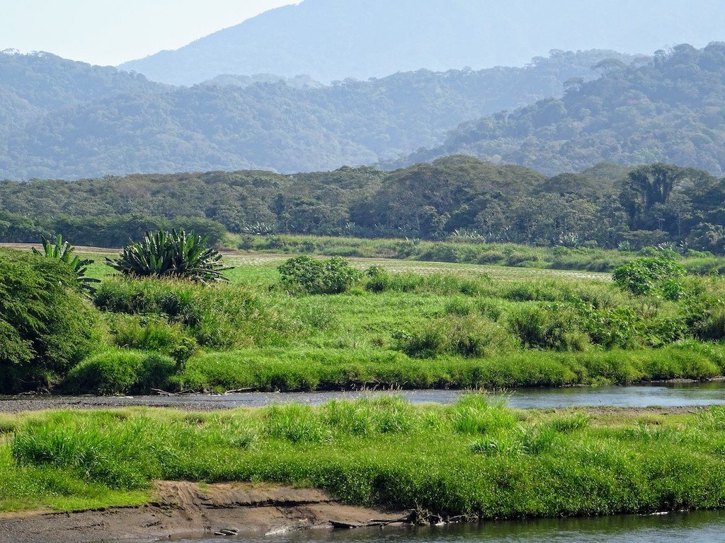 Costa Rica Manuel Antonio National park crocoland1