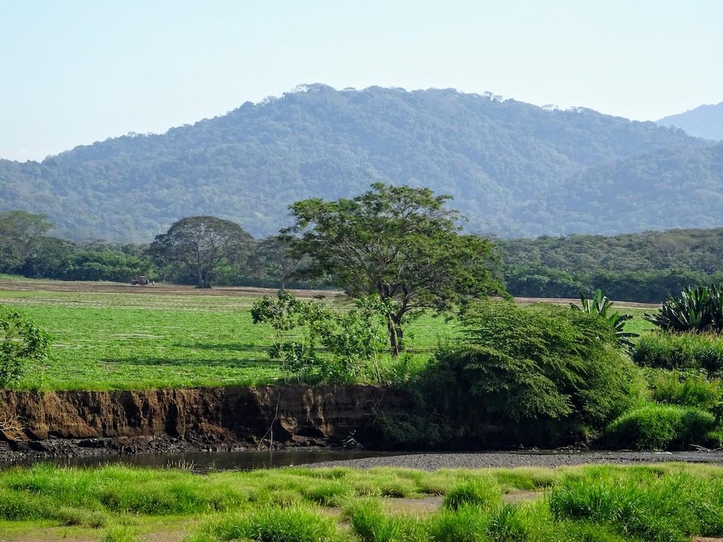 Costa Rica Manuel Antonio National park crocoland2