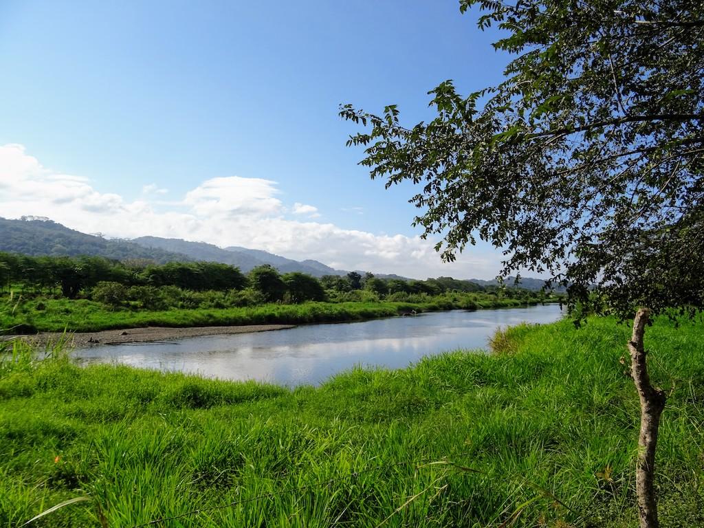 Costa Rica Manuel Antonio National park crocoland3