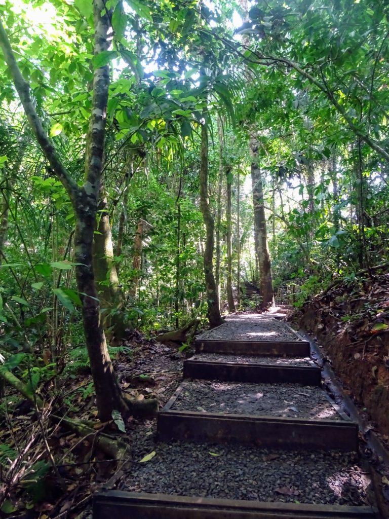 Costa Rica Manuel Antonio National park land10