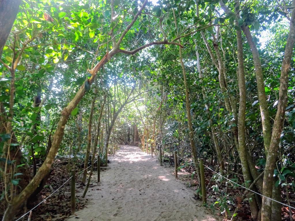 Costa Rica Manuel Antonio National park land2