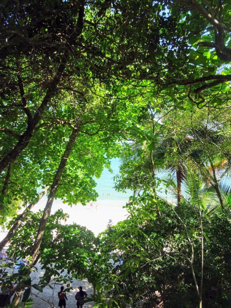 Costa Rica Manuel Antonio National park land6