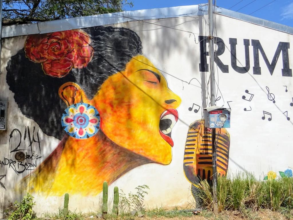 Costa Rica Tamarindo Art de rue