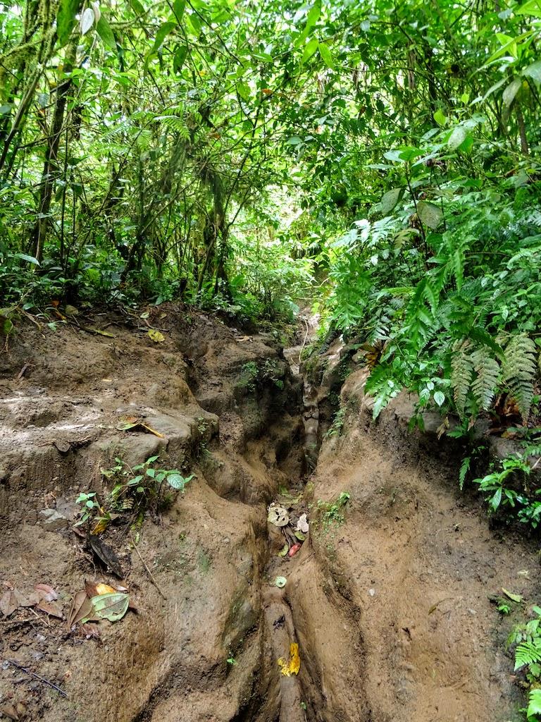 Costa Rica Arenal Cerro Chato trail up 9