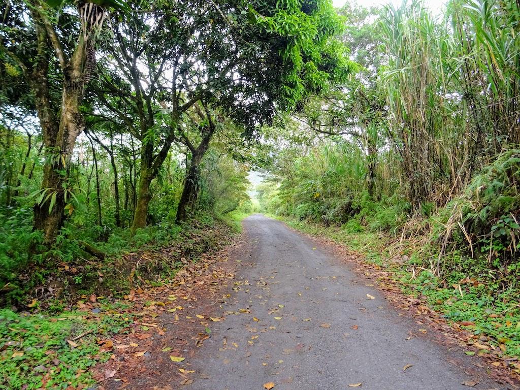 Costa Rica Arenal national park mirador road