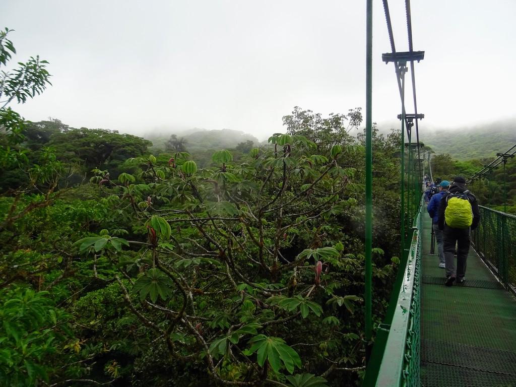 Costa Rica Monteverde Selvatura parc pont