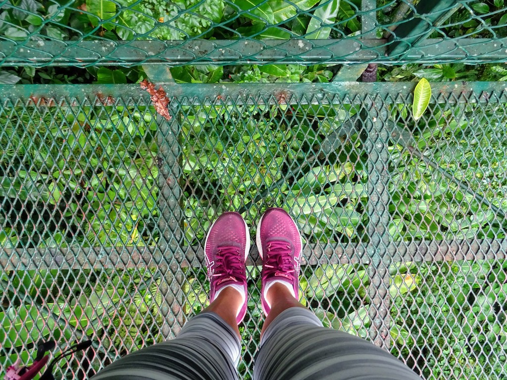 Costa Rica Monteverde Selvatura parc vue en bas 1
