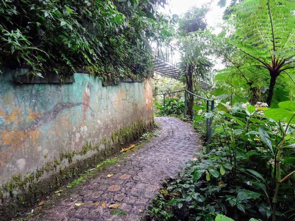 Costa Rica Monteverde Selvatura parc mur