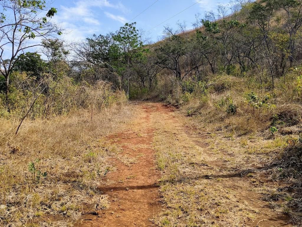 Costa Rica Potrero Trail Nature