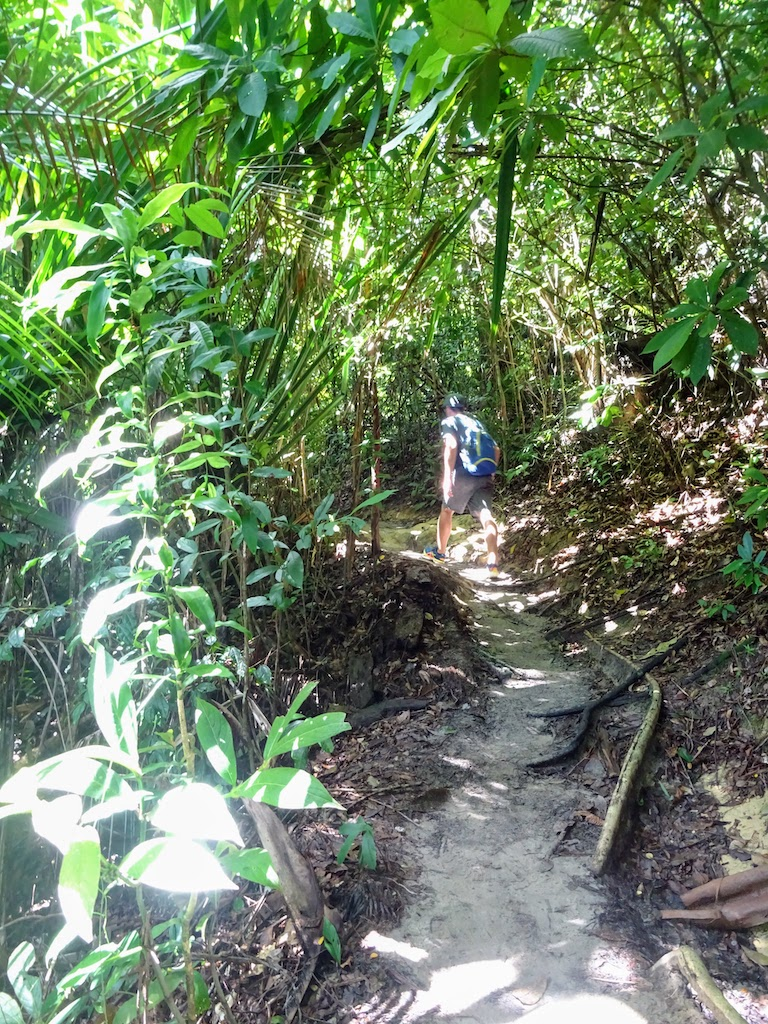 Malaisie Penang Hill jungle chemin