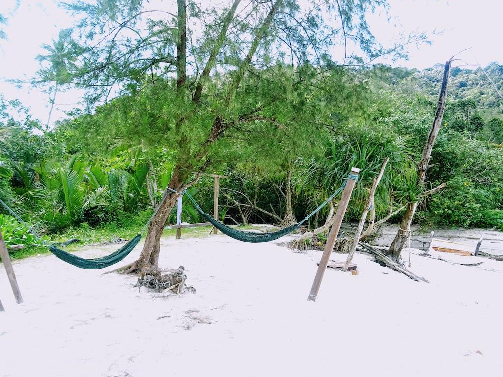 Malaysia Penang National park monkey beach3