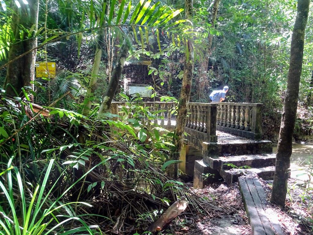 Malaysia Penang National park view3