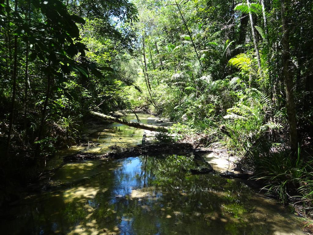 Malaisie Penang parc national vue4